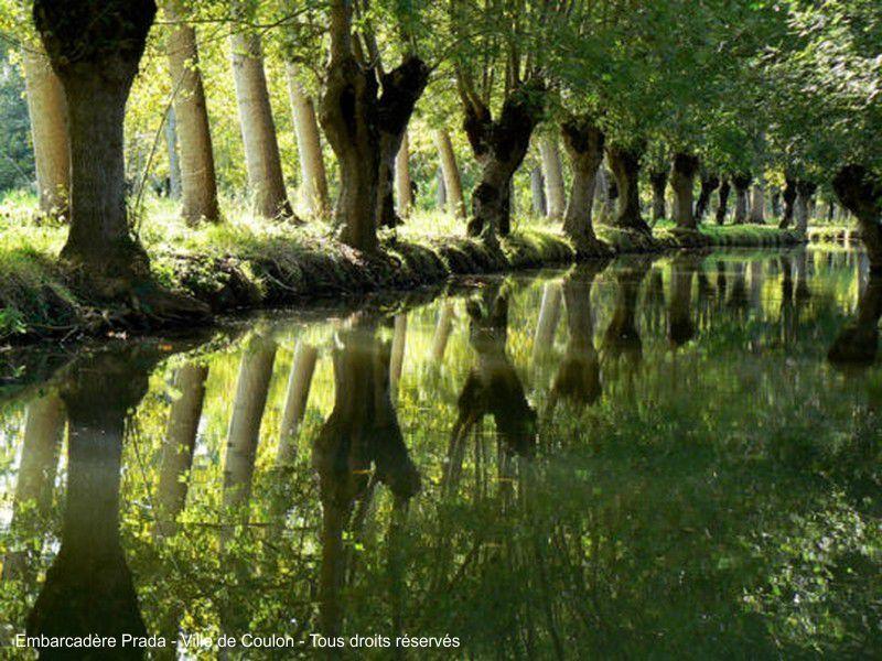 La Venise Verte dans le Marais Poitevin