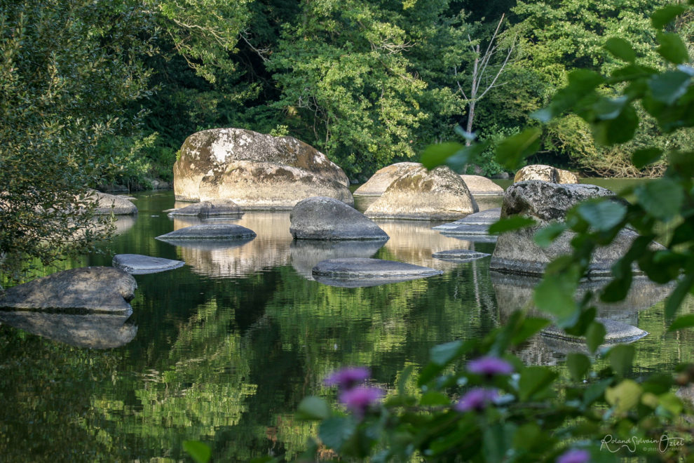 Blocs et rochers au milieu de la rivière la Sèvre Nantaise.